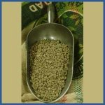 Colombian Supremo GREEN Coffee Beans 2 lb